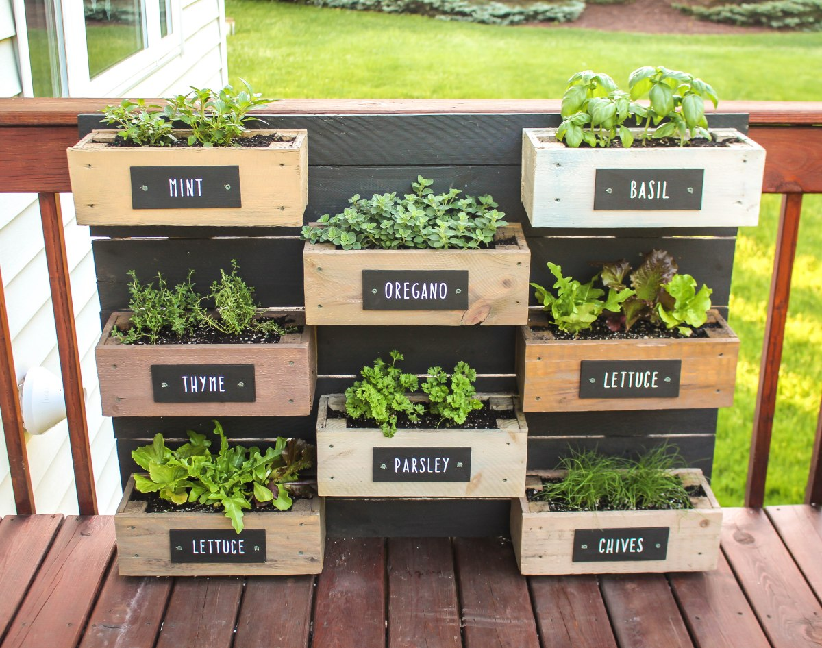 Herb Wall Planter | RUGGY DIY